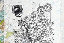 Noor stempel Hydrangea