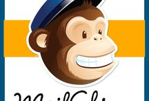 Mastering MailChimp / Tips for using MailChimp to promote email list.