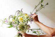 Flowers & funky plants