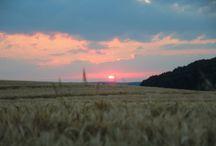 Oberschwaben-Landschaft / Oberschwaben hat eine abwechslungsreiche hügelige Landschaft. Upperswabia has a landscape like patchwork.