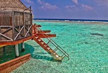 Island Holiday / dream island holiday