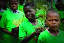 UNDP: Haiti Rebuilds