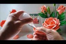 rosas de diu