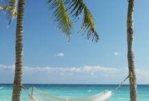 Hittin' the Beach! / Beach photos of West Palm Beach, FL