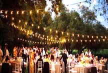 Wedding Venues / by Marissa McCombs