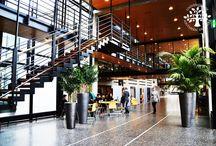 University of Southern Denmark / My hosting University for 6 amazing months in Denmark