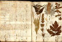 Herbarium-Botanicals