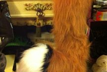 fox tail & mask other..