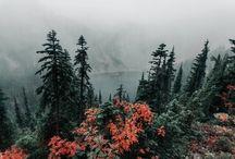 Take me there <3