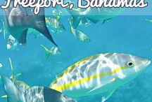 Bahamas!!!