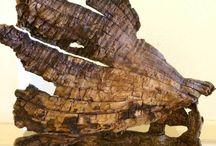 Adrift Desert Wood Assemblages