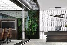 Rénovation & Aménagement Bureau moderne