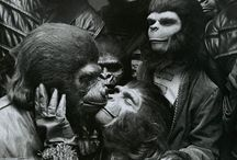 Take your stinking paws off me, you damned dirty ape! / by ian curtis