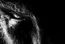 The Wolfman / by Douglas Campbell