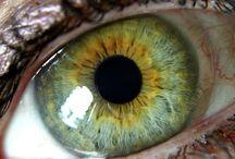 øyne / Oczy