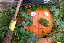 Halloween / by Meaghan Branigan-Lowe