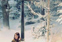 The Chronics of Narnia / by Josenaide Santos