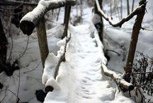 橋・The Path