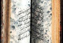 Sketchbook / by Susan Miller