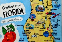 Florida The Sunshine State / by Lucy Leggiero