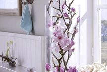 Orchids decorate, Flowers