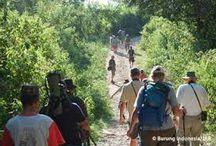 /komodo-mbeliling-trekking-4d-3n