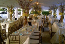 12.11.11 Wedding Ceremony & Reception - Coconut Palm Inn