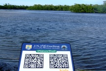QR-code parade / Best QR-codes found in every part of the world