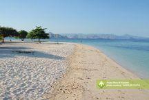 Pulau Rinca & Kanawa [operator : Sherlin Costa] / Pulau Rinca & Kanawa August 17 - 19, 2013 Link : http://triptr.us/t6