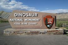 Dinosaur National Monument / Jurassic Park come to life! Well, no, not really. These dinosaurs are long dead. Thank goodness!