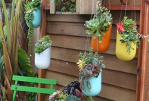 Plant crafts / by Laura Rocca