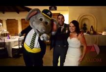 Oakland A's Stomper / Oakland A's Stomper surprises bride and groom at their wedding reception at Bridges Golf Club in San Ramon, CA.  Experienced wedding photographer Robert Valdes shares his portfolio collection of images shot at the Bridges Golf and Country Club.