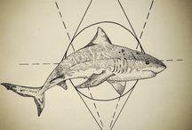 Shark Tattoo Men