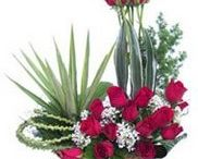Send flowers to Bijapur /  Surprise your loved ones in sheer awe and delight with this marvelous floral arrangement, meticulously crafted with delicate and fresh red roses. http://www.onlinedelivery.in/flowers-delivery-in-bijapur.aspx