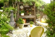 garden / by rob wenn