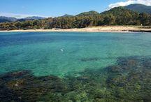 Sardegna e mare / Un po' di spiagge sarde della costa orientale!