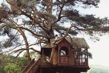 A tree house,a free house,a secret you and me house!