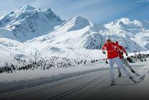 Engadinest Moritz Cross Country Skiing Tour