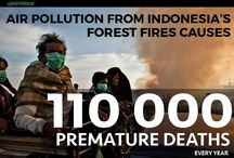 stop de vernietiging van het tropisch regenwoud