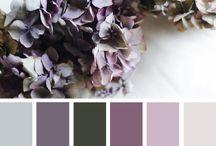Veggfarge / Farger på vegg
