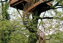 treehouse / by Philippa Woods