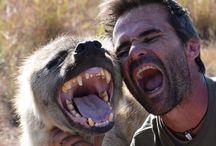 Ref: Teeth