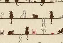 котики