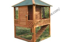 rabbit & guinea pig cage ideas / by Sarah Jackson