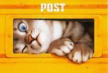 10. CAT ART & GRAPHICS ^..^ ♥♥♥ / Art by - Gary Patterson - AmyLyn Bihrle - Makoto Muramatsu  - Others