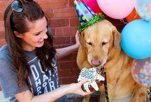Dog Birthdays!