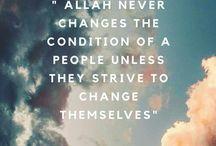 Islamic Insight