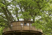 DIY Treehouse Ideas / Ideas for building a treehouse.