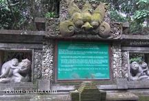 How to visit Ubud Monkey Forest Padangtegal, Bali / Ubud Monkey Forest is a small rain forest dwelt by some group of monkeys and other tropical animals. It is strategically located in the hearth of Ubud Village, precisely located in the region of Padang Tegal Village, Ubud Sub district and Gianyar Regency.