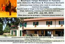 Tango / Tango lessons, workshops, performances and holidays by FRANTANGO BA